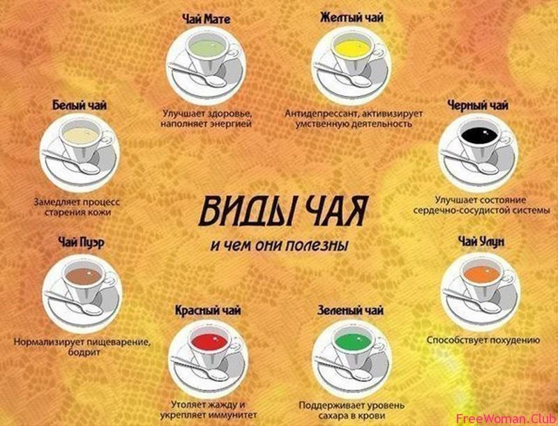 сорта чая для похудения