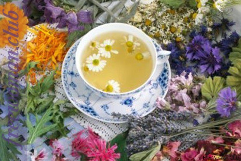травяной чай для похудения купить
